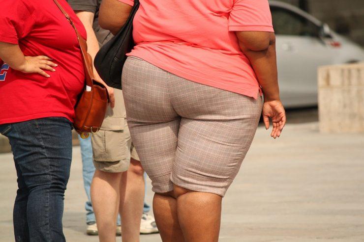 grasso accumulato