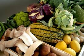 alimenti bio