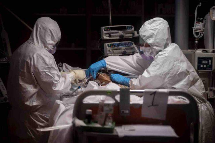 Coronavirus, l'antiparassitario Ivermectin lo uccide in 48 ore. La speranza arriva dall'Australia