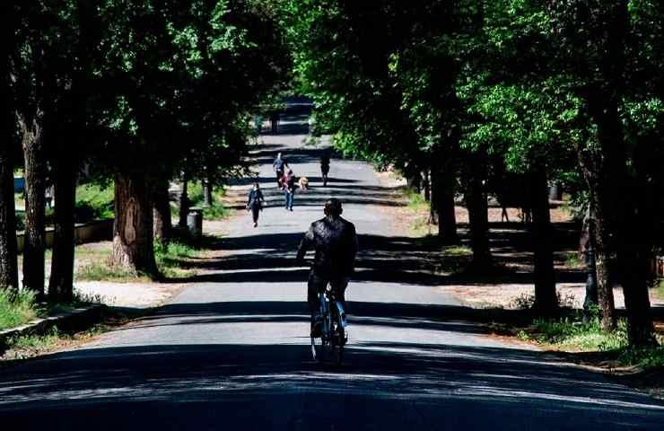Parco Roma