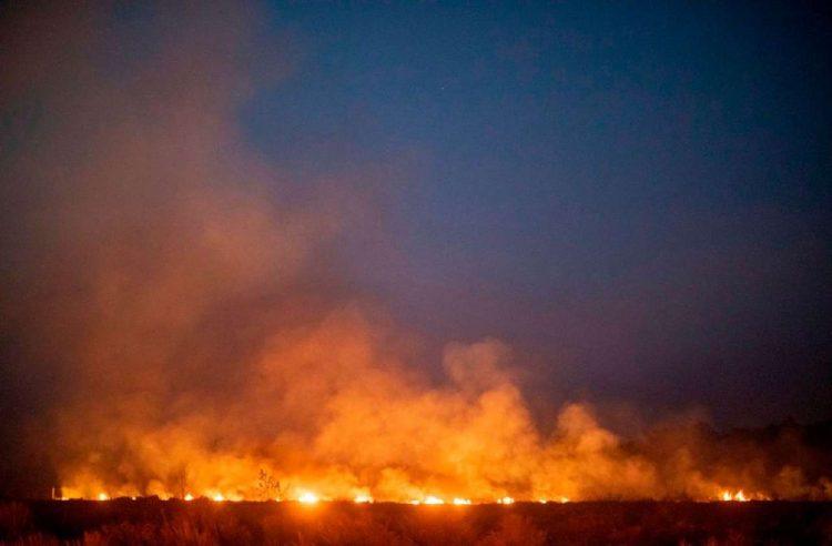 Incendio Foresta Amazzonica