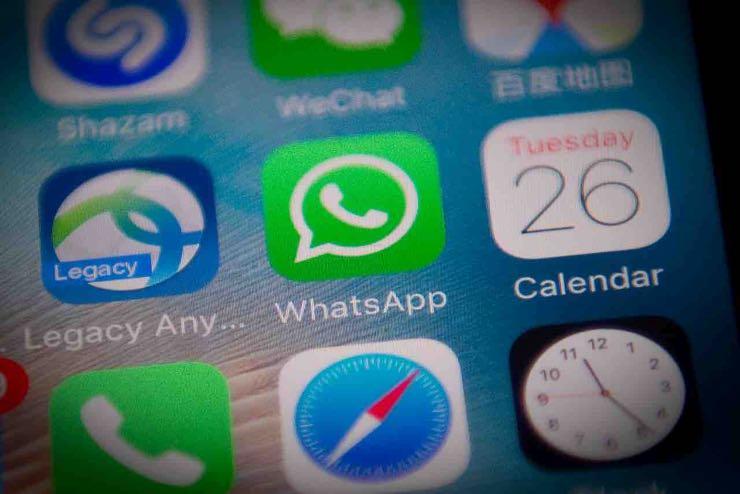 Whatsapp, nuovo schiaffo a bufale e catene: arrivano i suggerimenti di ricerca