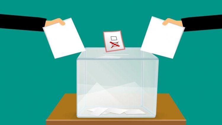Elezioni 2020 risultati