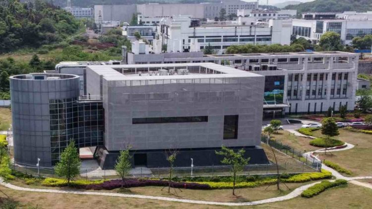 Il laboratorio epidemiologico P4 al Wuhan Institute of Virology (GettyImages)