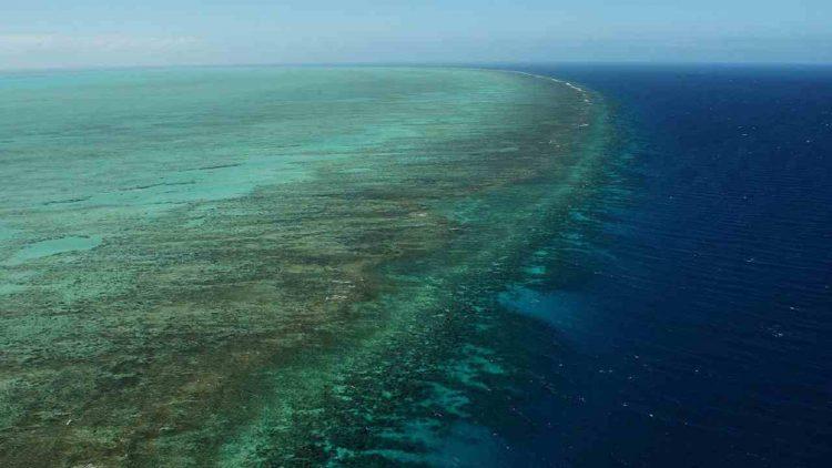Barriera corallina Australia