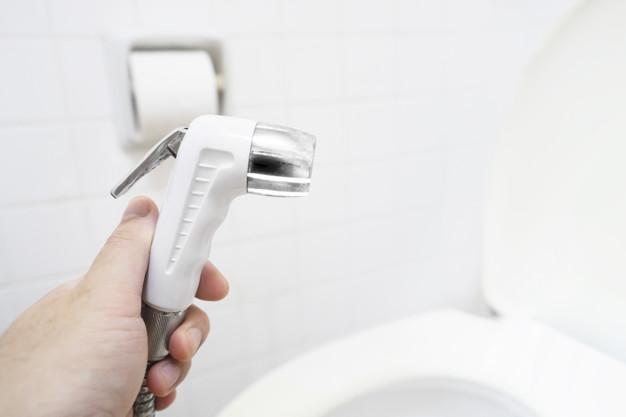 alternative carta igienica