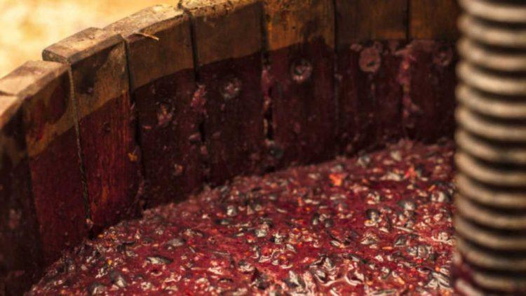 Feccia del vino (foto dal web)