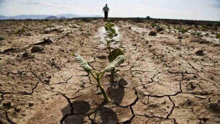 Clima caldo fuori controllo (foto dal web)