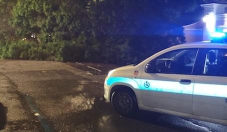 Caduta albero soccorsi Roma Capitale