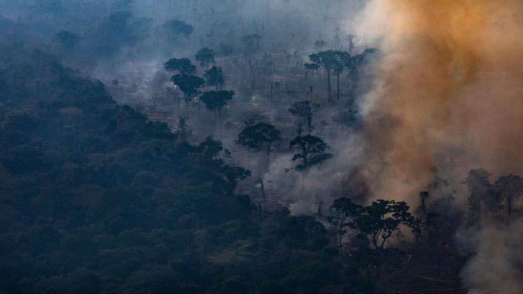 Foresta Amazzonica incendi