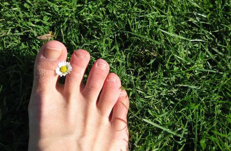 rimedi naturali funghi unghie