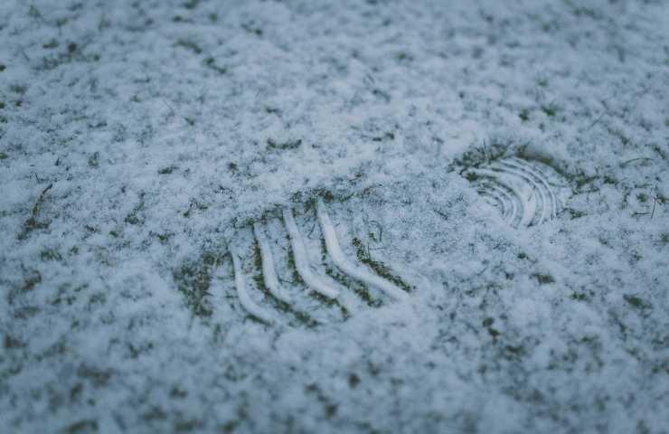 Nevica, appena finito sulle auto compaiono delle strane impronte – FOTO