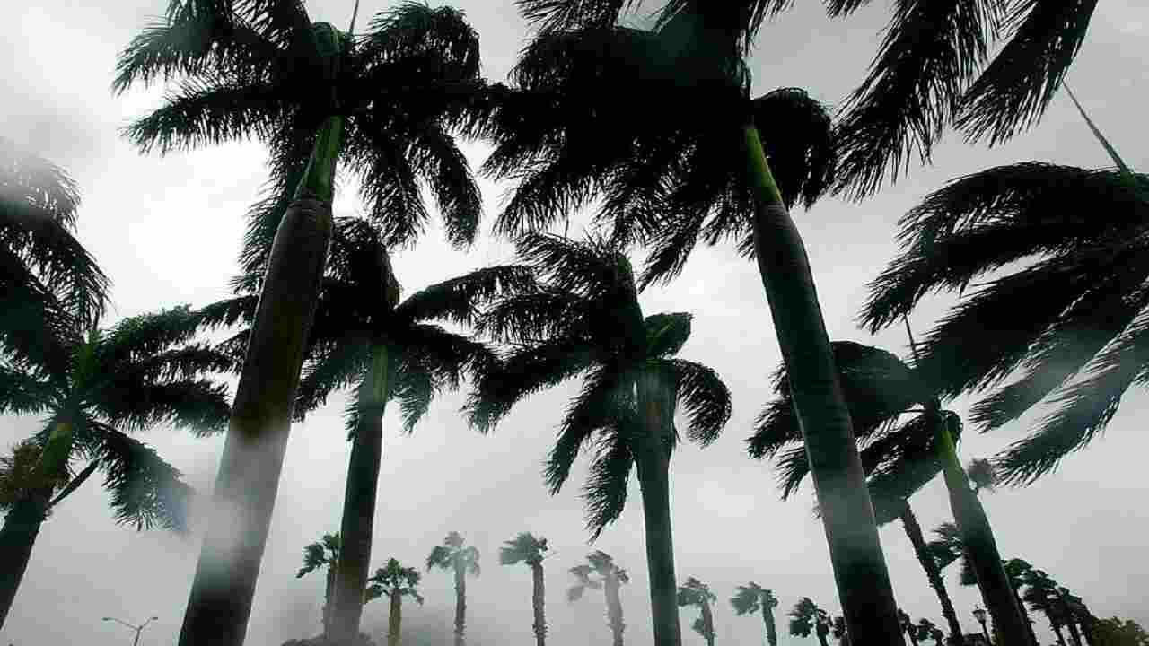 Cambiamento climatico fascia Tropicale