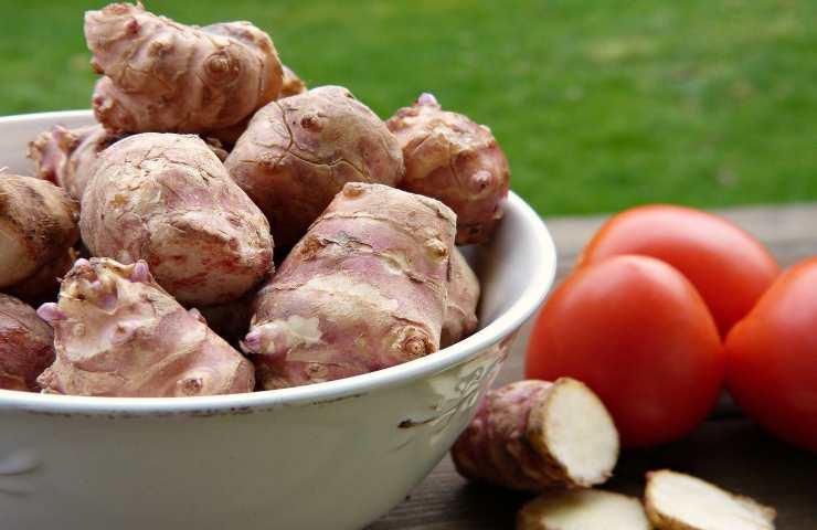 Topinambur, quali solo le proprietà e i benefici della radice alleata del colesterolo