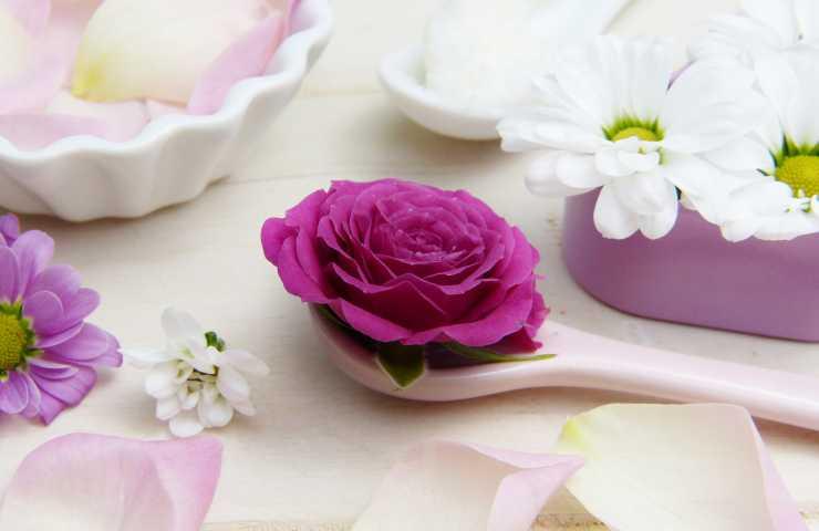 fiore in primo piano