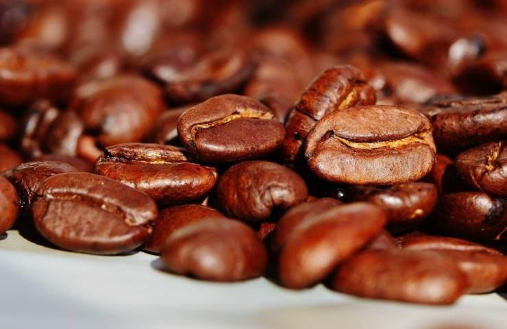 La ricetta del Plum-cake al caffè