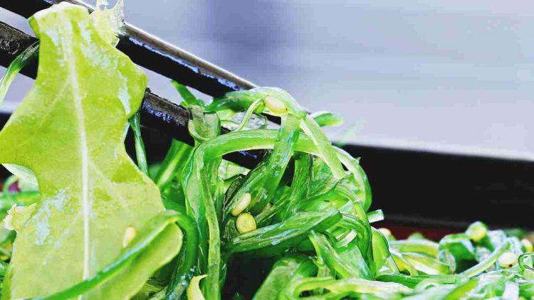 maschera-alghe