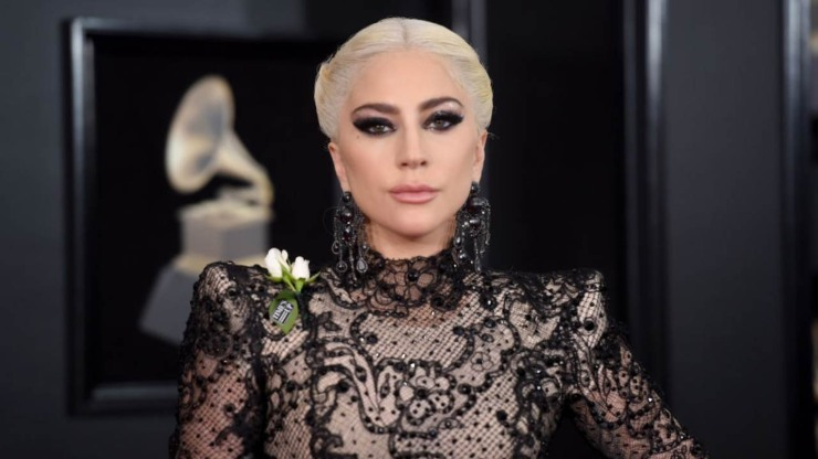 Lady Gaga dog sitter cani rapiti