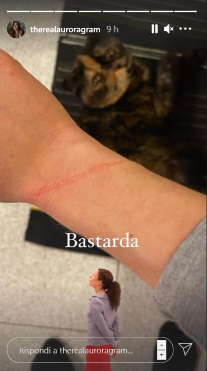 Aurora Ramazzotti graffio micio selfie