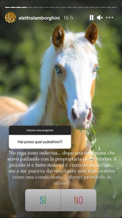 Elettra Lamborghini confessione Instagram Isola
