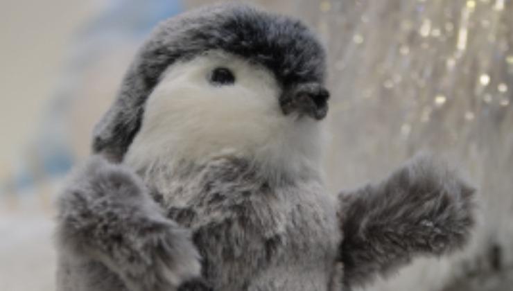 pinguino - pixabay