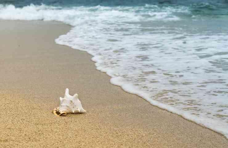rimedi migliori mal di maree